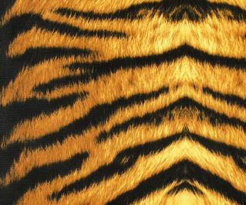 TIGER PRINT LYCRA BROWN BLACK